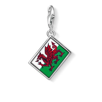 THOMAS SABO Wales Flag Charm Pendant